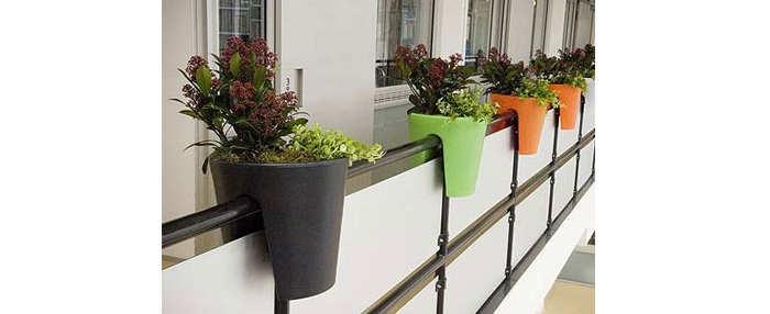 Gambar Cara Menanam Tanaman Bunga Halaman Apartment