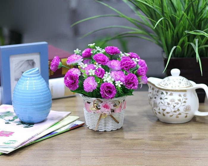Foto Cara Merawat Bunga Carnation Kantor