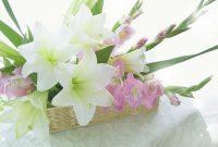 Foto Berbagai Macam Bunga Gladiol
