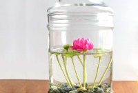Gambar Foto Cara Merawat Bunga Teratai Cepat Berbunga di Dalam Ruangan