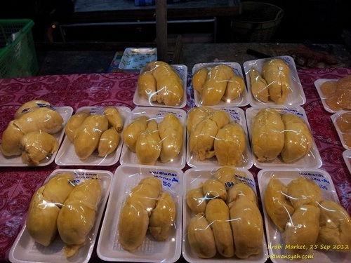 Gambar Foto Cara Menanam Durian Montong untuk Budidaya