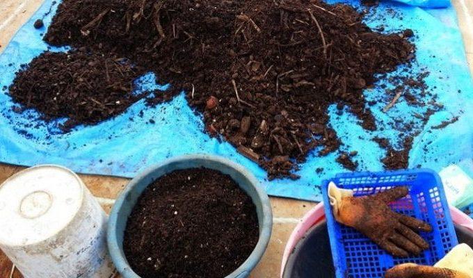 Gambar Foto Bahan Pembuatan Pupuk Organik Padat untuk Tanaman
