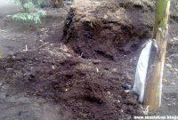 Gambar Foto Pengolahan Pupuk Organik Padat dari Kotoran Sapi