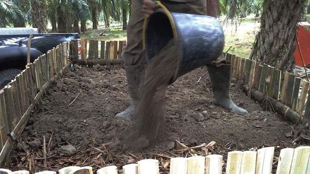 Gambar Foto Proses Pembuatan Pupuk Organik Padat dari Kotoran Sapi