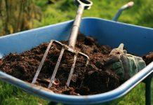 Gambar Foto Cara Penggunaan Pupuk Organik Padat pada Lahan Pertanian
