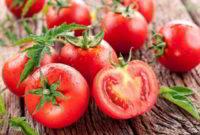 Gambar Foto Fakta Manfaat Khasiat Buah Tomat