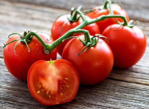 Gambar Foto Khasiat Buah Tomat dan Kandungan Buah Tomat